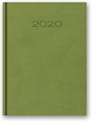 model21d-jasnozielony