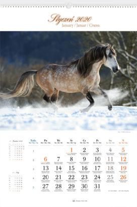 RW25 - Konie w obiektywie - kalendarium
