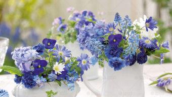 WN03---Kompozycje-kwiatowe---01