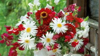 WN03---Kompozycje-kwiatowe---03