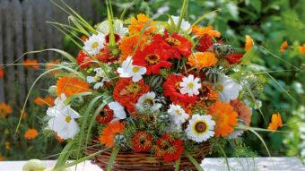 WN03---Kompozycje-kwiatowe---08