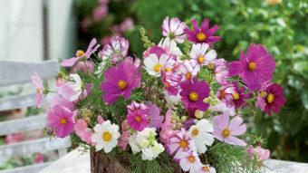 WN03---Kompozycje-kwiatowe---09