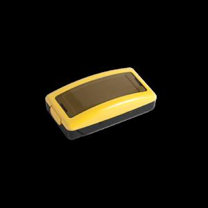 31_yellow