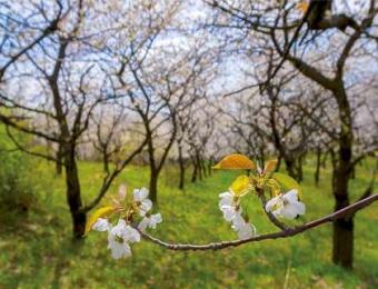 Kwiecień