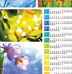 ikona kalendarz plakatowy natura